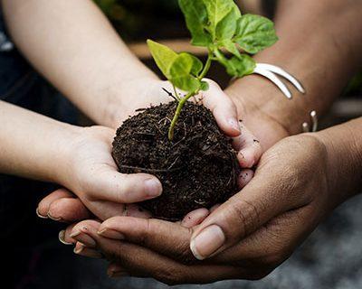 Máster en Educación Ambiental