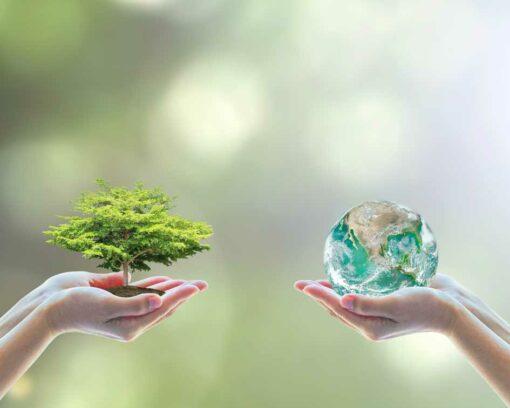 Estudiar Máster en Gestión Ambiental