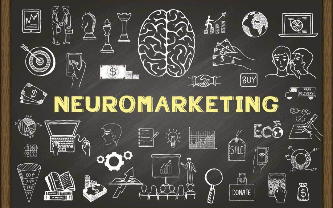¿Cómo reacciona el cerebro del consumidor?